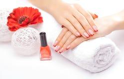 Manicure francese con il fiore rosso del papavero Immagine Stock