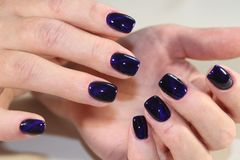 Manicure gel with cat lacquer eye. Beautiful manicure gel with cat lacquer eye Stock Photo