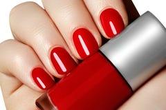 manicure Härliga den manicured kvinnans händer med rött spikar polermedel Arkivfoton