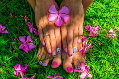 Manicure hands and feet on a grass background. Manicures and pedicures grass background with pink flowers , staging photo Royalty Free Stock Photos