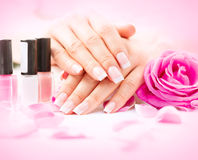 Manicure and hands spa Stock Photography