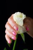 Manicure i gwóźdź sztuka Obrazy Royalty Free