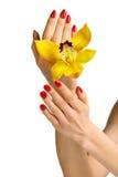 Manicure i orchidea Obrazy Stock