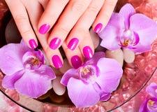 Manicure i pedicure Zdjęcia Stock