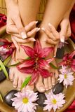 Manicure i pedicure Zdjęcia Royalty Free