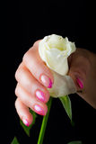 Manicure and nail art Royalty Free Stock Images