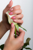 Manicure and nail art Stock Photos