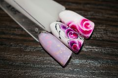 Manicure nail color design samples pink rose flowers. Nail art h royalty free stock images