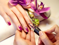 Manicure nail paint pink color. Flowers orchid Royalty Free Stock Photos