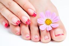 Manicure och pedicure som kopplar av med blommor Arkivbild