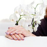 Manicure and orchid Stock Images