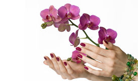 Manicure, orchid and beads Royalty Free Stock Photos