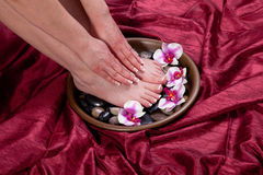 Manicure and pedicure. Manicured hands and pedicured feet of a woman Royalty Free Stock Photos