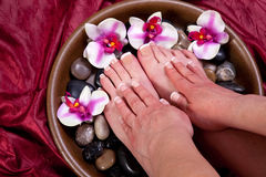 Manicure and pedicure. Manicured hands and pedicured feet of a woman Stock Photography