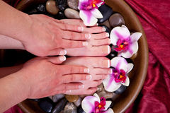 Manicure and pedicure Stock Images