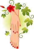 Manicure pedicure stock illustration