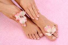 Manicure and pedicure royalty free stock images