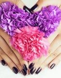 Manicure pedicure with flower close up  on white perfect shape hands spa salon, modern dark mani pedi Stock Photos