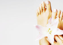 Manicure pedicure with flower lily close up isolated on white pe Stock Image