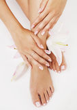 Manicure pedicure with flower lily close up stock photo