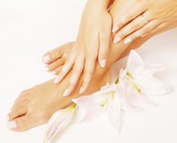 Manicure pedicure with flower lily close up isolated on white perfect shape hands spa salon Stock Image