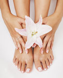 Manicure pedicure with flower lily close up Stock Images