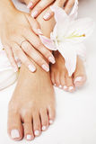 Manicure pedicure with flower lily close up Royalty Free Stock Images