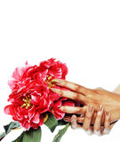 Manicure pedicure people hands concept, woman fingers in shape of heart holding pink rose flowers Royalty Free Stock Photos