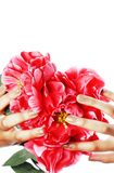 Manicure pedicure people hands concept, woman fingers in shape of heart holding pink rose flowers Stock Photo