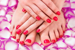 Manicure and pedicure. Red. See my other works in portfolio royalty free stock image