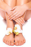 Manicure and pedicure with white orchid. isolated Royalty Free Stock Image
