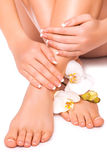 Manicure and pedicure with white orchid. isolated. Beautiful french manicure and pedicure with white orchidand stock image