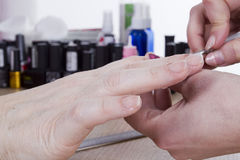 Manicure procedure in beauty salon Royalty Free Stock Photography