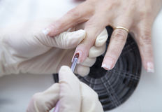 Manicure process on female hand  French manicure,  Making nail extension Royalty Free Stock Photo