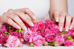 Manicure on the roses Stock Image