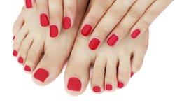 Manicure rosso e primo piano di pedicure, isolato su fondo bianco immagini stock