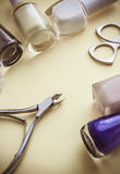 Manicure set beauty hands Stock Images