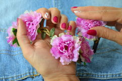 Manicure short red nails Royalty Free Stock Photos