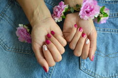 Manicure short red nails Royalty Free Stock Images