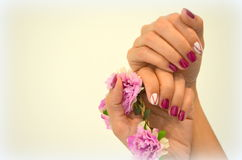 Manicure short red nails Stock Photo