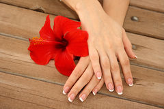 Manicure and spa stock image