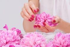 Manicure spa dat met gevoelige bloem vertroetelt Royalty-vrije Stock Fotografie