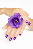 Manicure spa pampering with purple flower Royalty Free Stock Image
