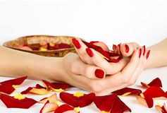 Manicure spa with rose petals Royalty Free Stock Photos