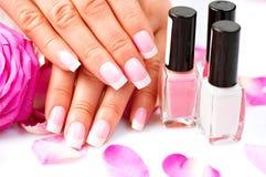 Manicure'u i ręk zdrój Zdjęcie Royalty Free