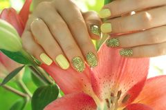 Manicure with yellow lacquer on beautiful well-groomed female hands, a lily flower close-up in gentle female hands, gel Stock Photography