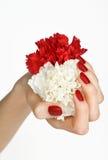 Manicure z czerwonym i biały kwiatem fotografia stock