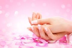 Manicurebegrepp över white - bakgrund manicured kvinnlighänder Fotografering för Bildbyråer