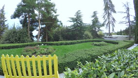 Manicured bushes in park stock video footage