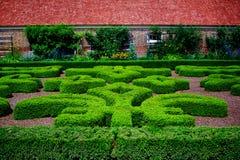 Manicured buskar på Mount Vernon Fotografering för Bildbyråer